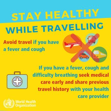 Stay healthy while travelling!